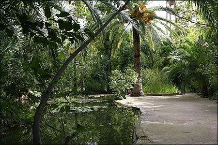 Jardins d' Alfabia